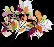 viragdealer-logo