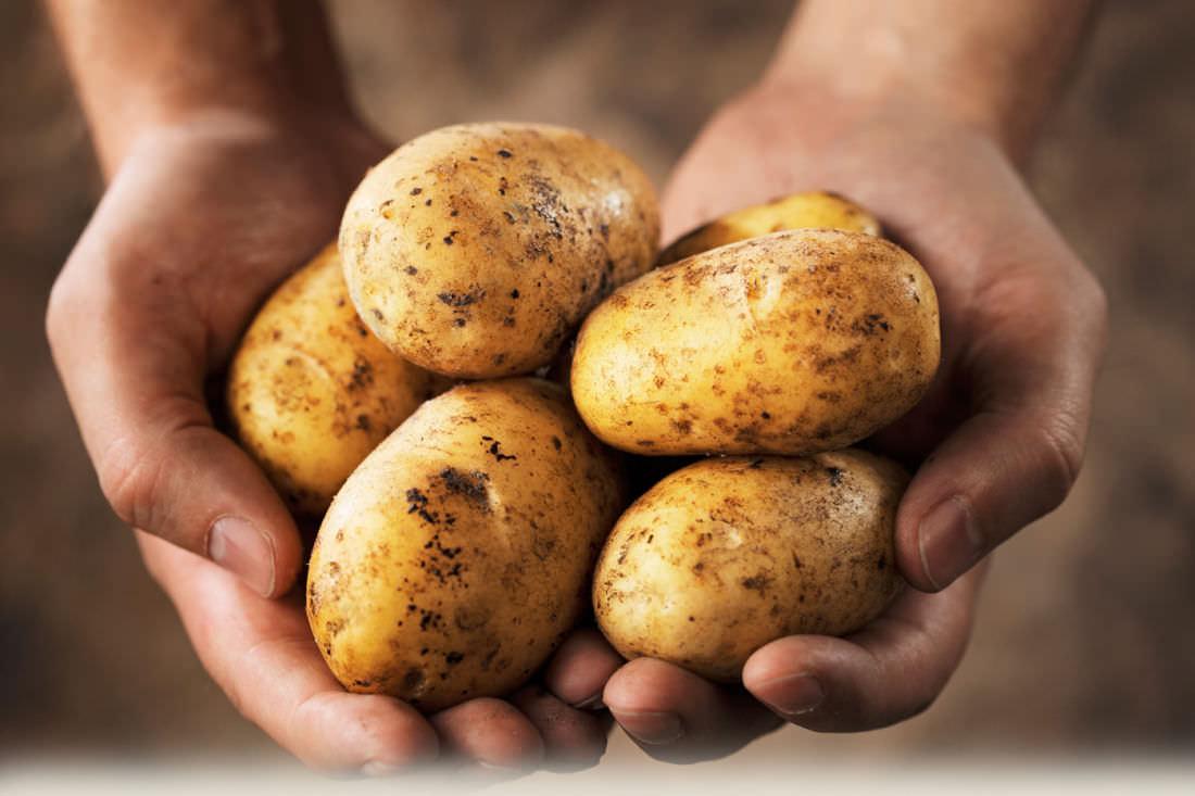 egy marék krumpli