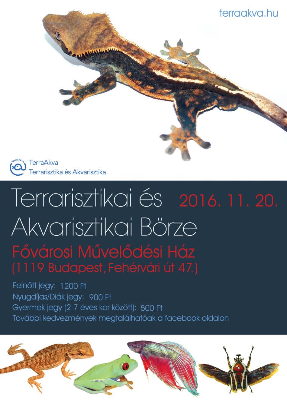 TerraAkva Börze plakátja