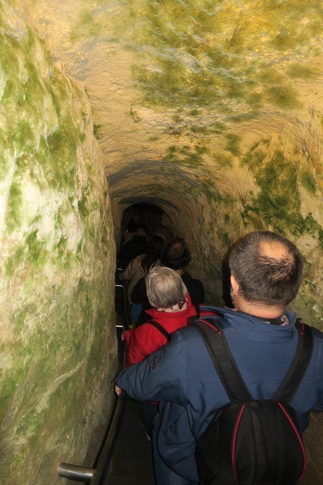 Barlang társkereső